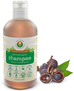 Probiotic Sensitive Skin Organic Shampoo [Unscented] – Raw Probiotic Soapberry Formula (pH Balanced) for Dry Hair, Dandruf...