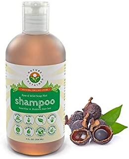 Pure, Sensitive Skin Organic Shampoo [Unscented] – Raw Probiotic Soapberry Formula (pH Balanced) for Dry Hair, Dandruff & Itchy Scalp – Wild Plants Selected for Eczema, Psoriasis & Dandruff