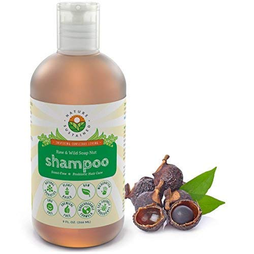 Probiotic Sensitive Skin Organic Shampoo [Unscented] – Raw Probiotic Soapberry Formula (pH Balanced) for Dry Hair, Dandruff & Itchy Scalp – Wild Plants Selected for Eczema, Psoriasis & Dandruff