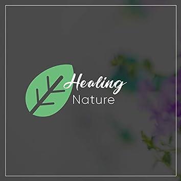 Healing Nature, Vol. 4