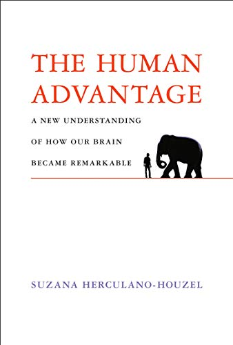 The Human Advantage: A New Understanding of How Our Brain Became Remarkable (English Edition)