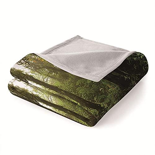 Mantas para Sofa Batamanta Mujer de Franela y Sherpa Manta Bebe Sofa Mantas con Estampados para la Cama y el Sofá 130x150 cm Bosque Verde