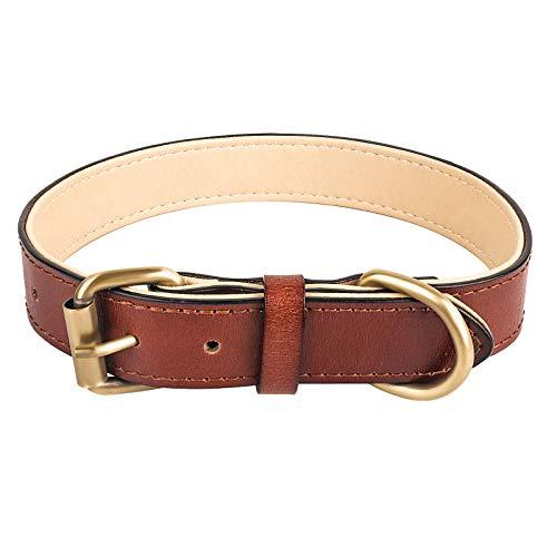 Collar de Perro de Cuero Trenzado y Duradero para Perros Medianos