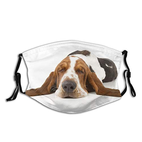 The Cult of The Basset Hound Dog Print Cloth Face Mask Colorful for Men Women Safety Reusable Washable Balaclava Face Mask Mouth Protection with 2 Filters