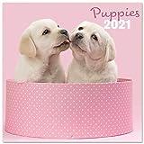 Grupo Erik CP21014 Calendario 2021 da Muro Chantrenne Dog, calendario cani 2021, 16 mesi, 30 x 30 cm
