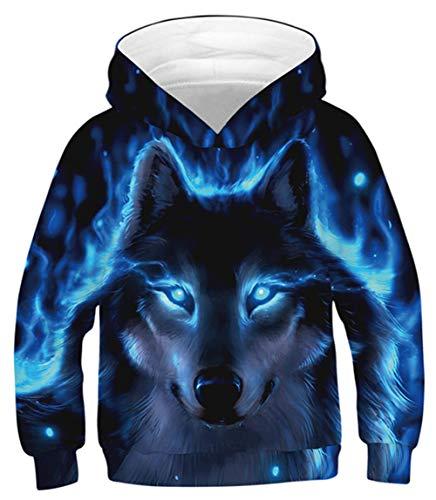 Idgreatim Unisex Kids Christmas Sweatshirt Pullover 3D Dinosaurier Hoodie Neuheit Pullover Mit Kapuze Pullover L