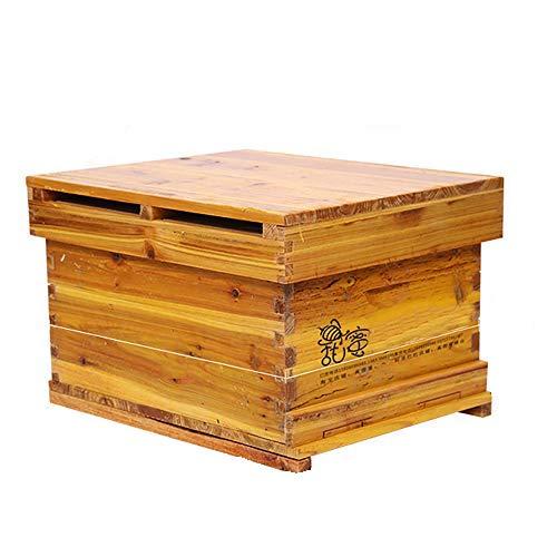 QYLT Colmena de Abeja, Wooden Beehive House, Casa de Abejas de Miel, Beekeeping Equipment Hive Beehive Supply Beekeeper Tool