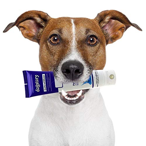 SunGrow Dog Toothpaste Make Tooth Brushing a Joyful Experience AllRound Dental Hygiene No More Expensive Dental Services Keeps Teeth Clean Reduce Plaque amp Dog Approved
