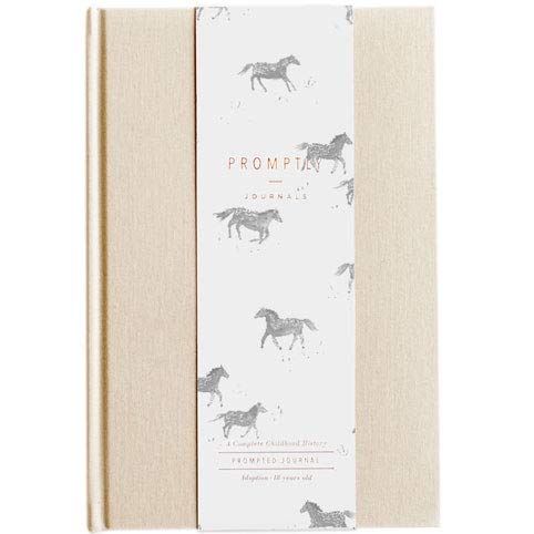 Promptly Journals - Adoption Chi...