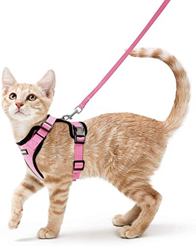 rabbitgoo Cat Harness and Leash for Walking, Escape Proof Soft Adjustable Vest Harnesses for Small Medium Cats, Easy Control Breathable Pet Safety Jacket with Reflective Strips & 1 Metal Leash Ring