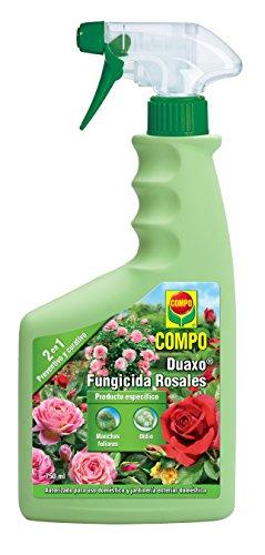 Compo Duaxo Fungicida Rosales, Spray 2 en 1 preventivo y curativo, Apto para jardinería Exterior doméstica, 26x11x5 cm