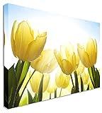 Qbbes, amarillo sol tulipanes jardín floral flor lienzo pared arte imagen impresión-24x20inch(60x50cm)no frame