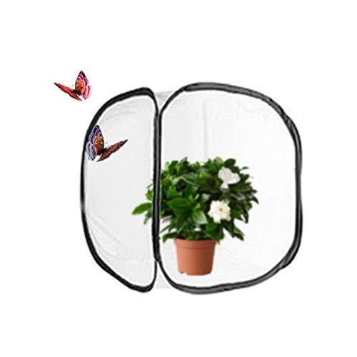 Zusammenklappbar Insekten- Und Schmetterling Habitat Käfig Net Pop-up Breath Insekt Zucht Net Schmetterling Incubator (11,8 X 11,8 X11.8 Zoll) Dekoration Supplies