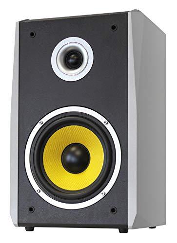 Dynavox TG-1000B-E HiFi Lautsprecher 50 Watt Silber (Paar)