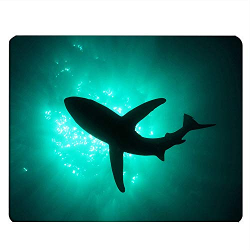 Nicokee Shark Gaming Mousepad Swimming Sea Shark Cold Green Sea Mouse Pad Mouse Mat for Computer Desk Laptop Office 9.5 X 7.9 Inch Non-Slip Rubber