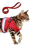 AEITPET Arnes Gato, Arnes para Gatos, Correa arnés arnes Gato pequeño Cuerda Chaleco Ajustable Respirante Arnés para Gatos y Correa Chaleco Suave y Transpirable para Mascotas pequeñas (M, Rojo)