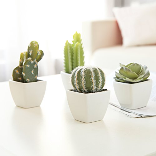 MyGift Set of 4 Artificial Mini Succulent & Cactus Plants in White Cube-Shaped Pots