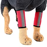 YiiJee Verletzung Schutzhülle Kniepolster Hund Leggings Schutz Hundebeine Pet Protectors Dog Surgery (Rot #2, S)