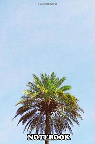 Notebook: A Photograph Of A Single Magnificent Palm Tree , Journal for Writing, College Ruled Size 6' x 9', 110 Pages