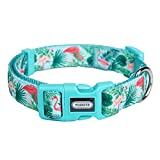 YUDOTE Adjustable Basic Dog Collar, Durable Nylon Collars for Medium Female Male Dogs & Puppies,...