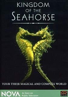NOVA - Kingdom of the Seahorse