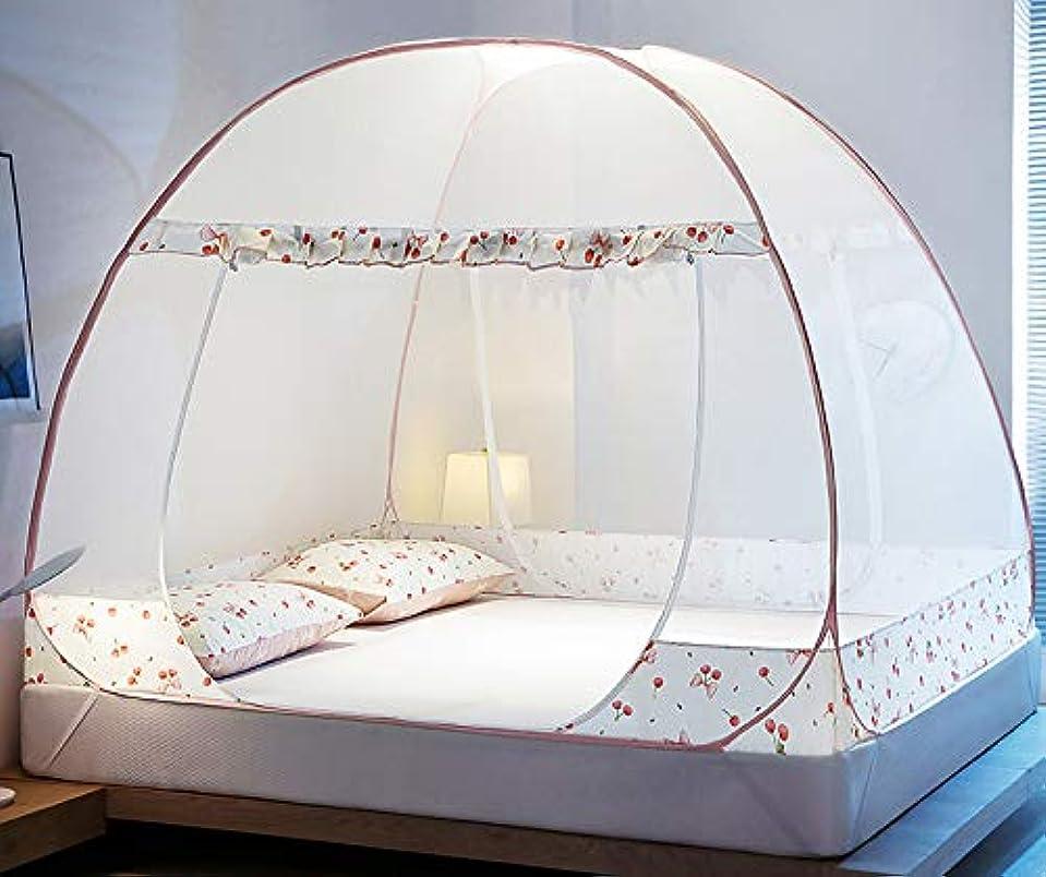 艦隊任意寝てる蚊帳 かや 虫除け 蚊よけ 密度が高い 二つドア 底付き 害虫侵入防ぎ ワンタッチ 折りたたみ式 持ち運べる 収納便利