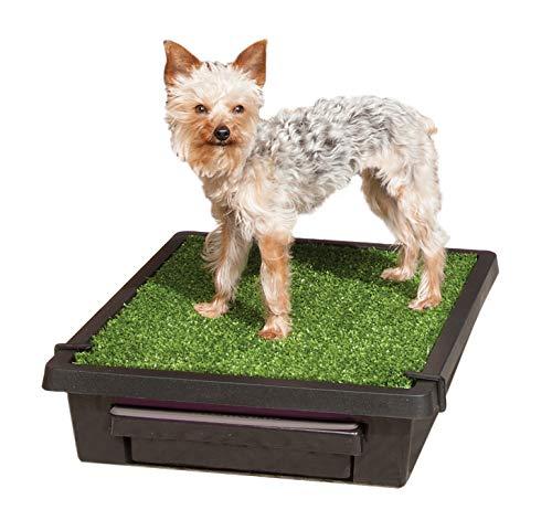 PetSafe - Inodoro portátil para Mascotas con césped Artificial