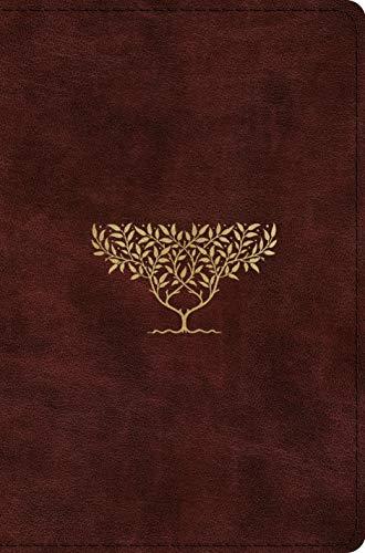 ESV Compact Bible (TruTone, Burgundy, Olive Tree Design)