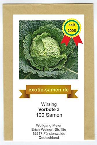 Wirsingkohl - Vorbote 3-100 Samen