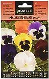 Semillas de Flores - Pensamiento Gigante variado - Batlle