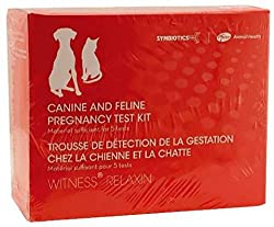 Synbiotics Canine and Feline Pregnancy Test Kit
