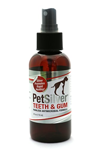 PetSilver Teeth & Gum Spray for Dogs and Cats | Vet Formulated | Natural Dental Care Solution | Control Tarter and Plaque Build Up | Antimicrobial Formula – No Brushing | Easy to Apply