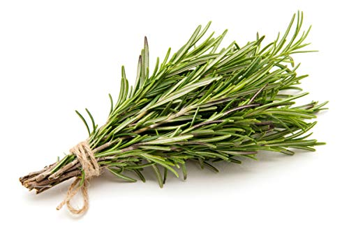 Cliganic Organic Rosemary Essential Oil, 100% Pure Natural Undiluted, for Aromatherapy | Non-GMO Verified