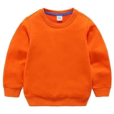 DQCUTE Boys' Crewneck Sweatshirt Girls Sport Long Sleeve Cotton Pullover Tops Kids Toddler Solid T-Shirt Orange 3T