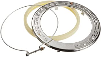Pentair 600095 Stainless Steel Face Ring Assembly Replacement IntelliBrite White LED Pool Light