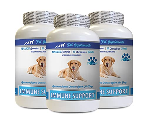 Top 10 best selling list for burdock supplement for dogs