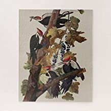 PotteLove Pileated Woodpecker Audubon Bird Wildlife Painting Jigsaw Puzzle 1000 Pieces for Adults, Entertainment DIY Toys for Creative Gift Home Decor