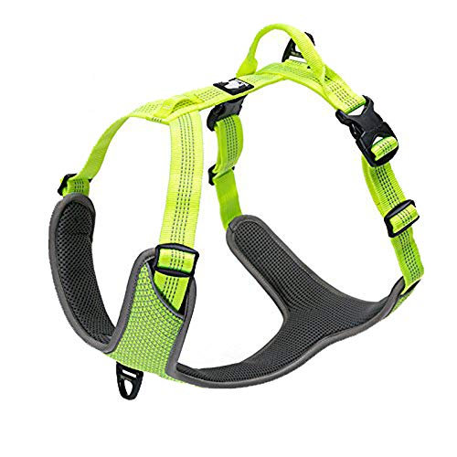 TRUE LOVE Dog Harness Outdoor Adventure II Reflective Vest with 2 Leash Attachments Matching Leash and Collar Available TLH6071