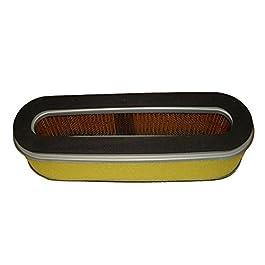 Filtre à air compatible avec tondeuse à gazon Honda HR21et HR194