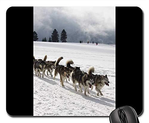 Yanteng Tappetini per Mouse da Gioco, Tappetino per Mouse, Huskies Sport Snow Race Pet Rudel Nature Team
