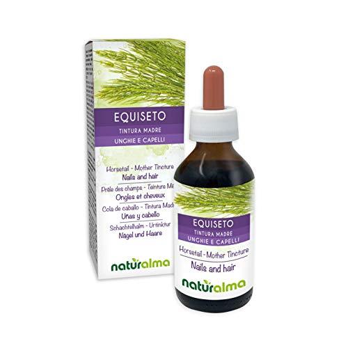 SCHACHTELHALM oder PFERDESCHWANZ (Equisetum arvense) Kraut Alkoholfreier Urtinktur NATURALMA | Flüssig-Extrakt Tropfen 100 ml | Nahrungsergänzungsmittel | Veganer