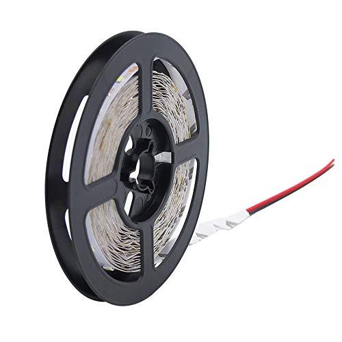 Bedler - Tira de luces LED de 5 m, 3528, 300 ledes, flexible, luz nocturna, LED, luces de Navidad, cuerda impermeable, LED, para bar, CC 12 V, blanco cálido