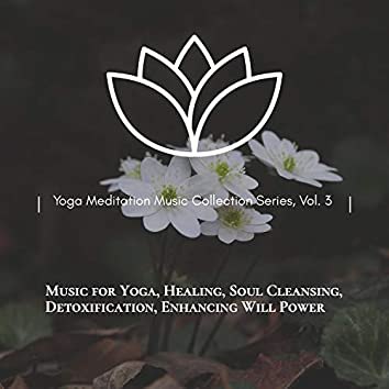 Yoga Meditation Music Collection Series, Vol. 3 (Music For Yoga, Healing, Soul Cleansing, Detoxification, Enhancing Will Power)