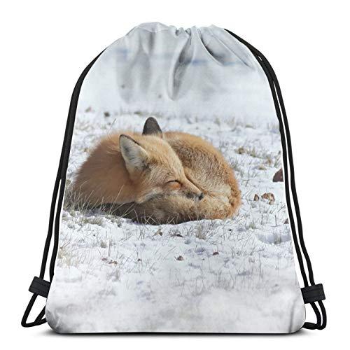 Perfect household goods Fox Winter Nature Rucksack mit Kordelzug, leicht, für Fitnessstudio, Reisen, Yoga, Freizeit, Snackpack, Schultertasche für Wandern, Schwimmen, Strand
