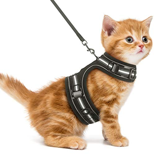 rabbitgoo Cat Harness and Leash for Walking Escape Proof, Adjustable Vest with Reflective Strip for Small Medium Cats, Comfortable Pet Jacket for Safety Outdoor Activity, Black, S(Chest:9.3