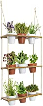 3 Tiered Hanging Planter Shelf with Pot Set, Wood Floating Herb Garden for Kitchen Counter, Vertical Succulent Hanger for Patio, Porch, Balcony, Boho Plant Shelves for Wall, Multi Tier Vertical Stand