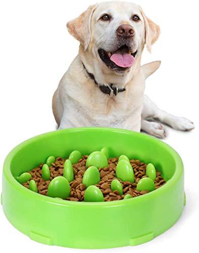 GWL Gamelle d'alimentation Lente pour Chiens, Gamelle pour Alimentation Lente, Gamelle Anti Glouton pour Chien Chat, Favorise Une Alimentation Saine et Une Digestion Lente (Vert)