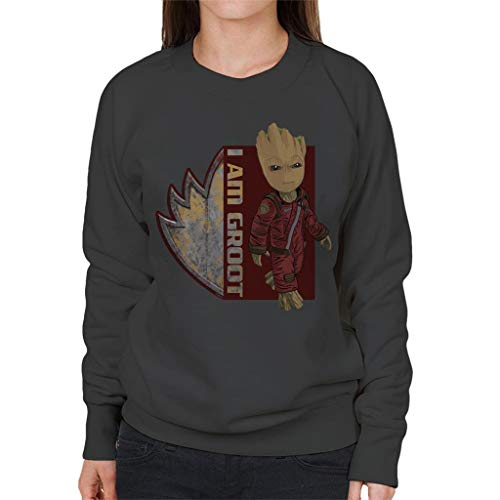 Marvel Guardians of The Galaxy I Am Ravagers Baby Groot Women's Sweatshirt
