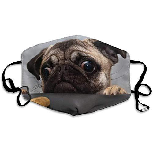 Lustige gierige Hund Mops Keks stilvolle Mundabdeckung Gesicht Mundabdeckung Faltstaubabdeckung