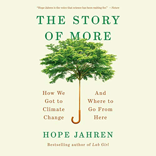 Couverture de The Story of More